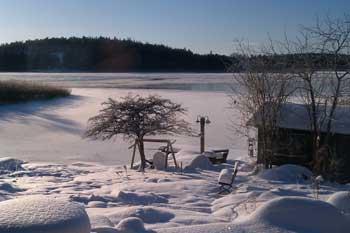Vintern-kom-tidigt